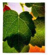 Ivy Light Fleece Blanket