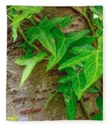 Ivy Wrapped Tree Trunk Fleece Blanket