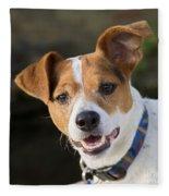Jack Russell Terrier Fleece Blanket