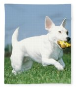 Jack Russell Terrier Dog Fleece Blanket