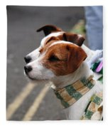 Jack Russell Terriers Fleece Blanket