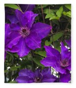 Jackmanii Purple Clematis Vine Fleece Blanket