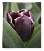 Jackpot Tulip Fleece Blanket