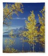 1m9206-jackson Lake And Aspens, Wy Fleece Blanket