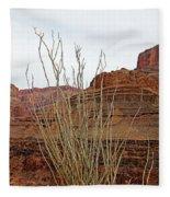 Jacob's Staff Grand Canyon Fleece Blanket
