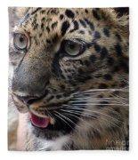 Jaguar-09498 Fleece Blanket