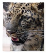 Jaguar-09499 Fleece Blanket