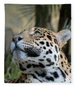 Jaguar Portrait Fleece Blanket