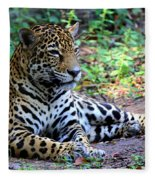 Jaguar Resting From Play Fleece Blanket