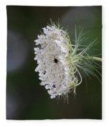jammer Garden Lace 2 Fleece Blanket