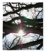 Jammer Lateralus Branching Trees Fleece Blanket