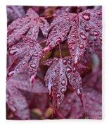 Japanese Acer Palmatum Atropurpurea Shrub Fleece Blanket