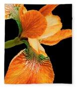 Japanese Iris Orange Black Fleece Blanket