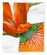 Japanese Iris Orange White Five Fleece Blanket
