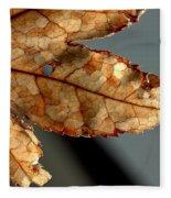Japanese Maple Leaf Brown - 2 Fleece Blanket