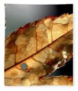 Japanese Maple Leaf Brown - 4 Fleece Blanket