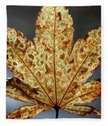 Japanese Maple Leaf Brown - 3 Fleece Blanket