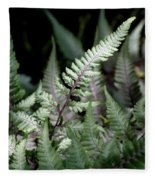 Japanese Painted Fern Fleece Blanket