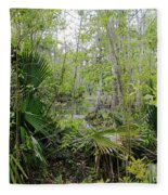 Jean Lafitte National Preserve Swamp Louisiana Fleece Blanket