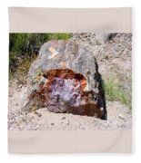 Jewel In Petrified Forest Fleece Blanket
