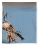jn03 Bearded Reedling Juvenile Fleece Blanket
