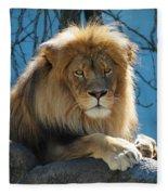 Joshua The Lion On His Rock Fleece Blanket