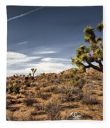 Joshua Tree 15 Fleece Blanket