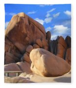 Joshua Tree Anomoly Fleece Blanket