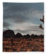 Joshua Tree Hidden Valley Panorama Fleece Blanket