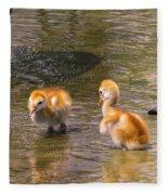 Jump In. The Water Is Fine Fleece Blanket