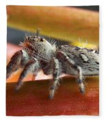 Jumper Spider Fleece Blanket