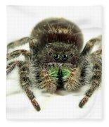 Jumping Spider Fleece Blanket