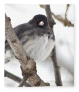 Junco Posing Fleece Blanket