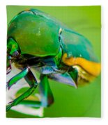 June Bug Fig Beetle Fleece Blanket