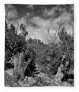 Juniper Trees At The Ghost Ranch Black And White Fleece Blanket