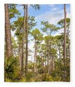 Ancient Looking Florida Forest At Aubudon Corkscrew Swamp Sanctuary Fleece Blanket