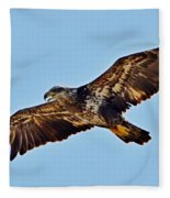 Juvenile Bald Eagle In Flight Close Up Fleece Blanket