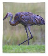 Juvenile Sandhill Fleece Blanket