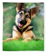 K9 Cute Fleece Blanket