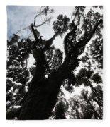 Kahikatea New Zealand Native Tree Fleece Blanket