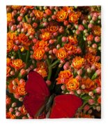 Kalanchoe Plant With Butterfly Fleece Blanket