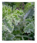 Kale Interior Fleece Blanket