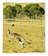 Kangaroo Hop Fleece Blanket