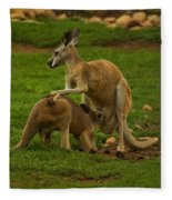 Kangaroo Nursing Its Joey Fleece Blanket