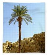 Karnak Temple 12 Fleece Blanket