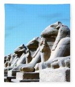 Karnak Temple Statue 14 Fleece Blanket