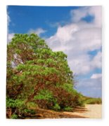 Kauai Beach Fleece Blanket