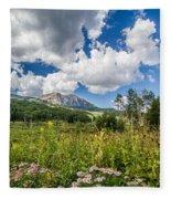 Kebler Pass Meadow Fleece Blanket