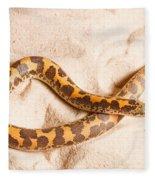 Kenyan Sand Boa Eryx Colubrinus Fleece Blanket