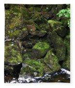 Ketchikan Riverbank Fleece Blanket
